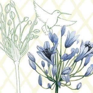 Hummingbird Dance IV Digital Print by Popp, Grace,Decorative