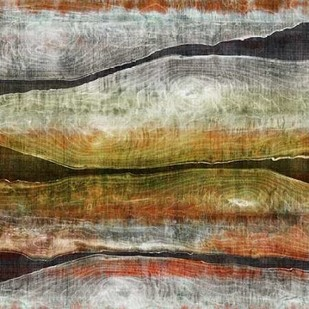 Painted Live Edge I Digital Print by Butler, John,Abstract