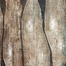 Live Edge I Digital Print by Butler, John,Abstract