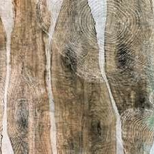 Live Edge II Digital Print by Butler, John,Abstract
