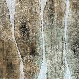 Live Edge IV Digital Print by Butler, John,Abstract