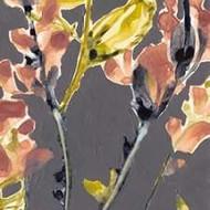 Anemone & Coral II Digital Print by Goldberger, Jennifer,Decorative