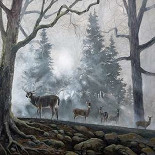 Deer Path I Digital Print by Lynnsy, B.,Impressionism