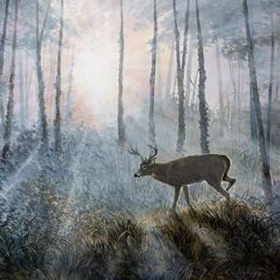 Deer Path IV Digital Print by Lynnsy, B.,Impressionism