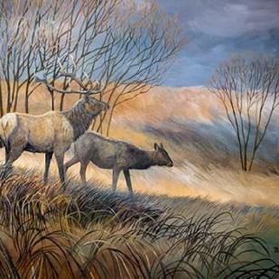 Elk Journey I Digital Print by Lynnsy, B.,Impressionism