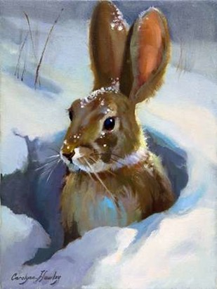 Snow Bunny Digital Print by Hawley, Carolyne,Decorative