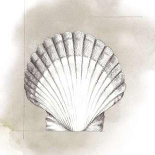 Shell Diagram II Digital Print by Popp, Grace,Impressionism