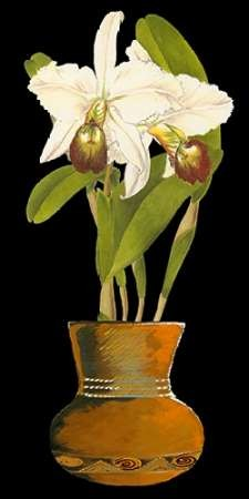 Orchids in Pot I Digital Print by Unknown,Decorative