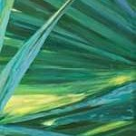 Fan Palm II Digital Print by Wilkins, Suzanne,Impressionism