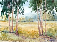 Luminous Meadow II Digital Print by OToole, Tim,Impressionism