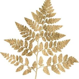 Graphic Gold Fern I Digital Print by Studio W,Decorative