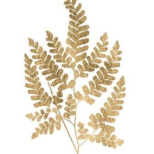 Graphic Gold Fern II Digital Print by Studio W,Decorative