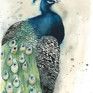 Watercolor Peacock Portrait I Digital Print by Popp, Grace,Impressionism
