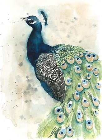 Watercolor Peacock Portrait II Digital Print by Popp, Grace,Impressionism