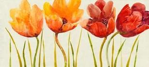 Row of Tulips I Digital Print by Otoole, Tim,Impressionism