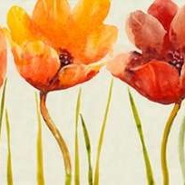 Row of Tulips I Digital Print by Otoole, Tim,Impressionism
