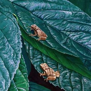 Spring Peepers II Digital Print by Szatkowski, Fred,Realism