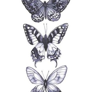 Monochrome Butterflies I Digital Print by Popp, Grace,Realism