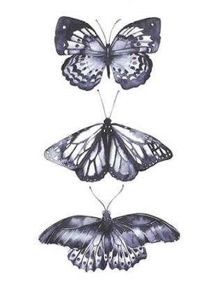 Monochrome Butterflies II Digital Print by Popp, Grace,Realism
