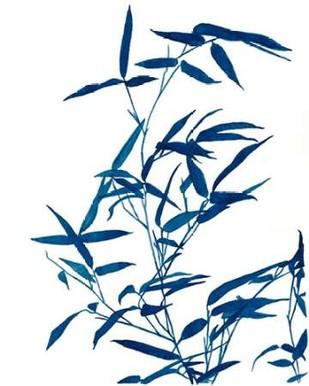 Indigo Botanica I Digital Print by McCavitt, Naomi,Decorative