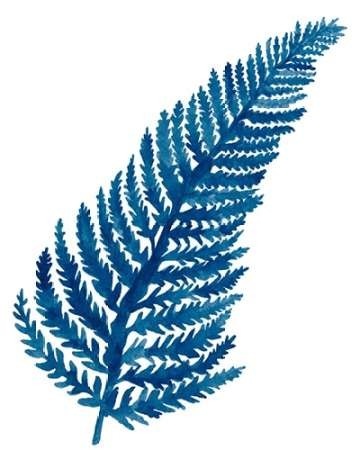 Indigo Botanica IV Digital Print by McCavitt, Naomi,Decorative