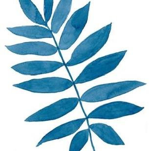 Indigo Botanica V Digital Print by McCavitt, Naomi,Decorative
