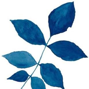 Indigo Botanica VI Digital Print by McCavitt, Naomi,Decorative