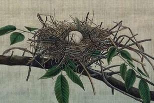 Nesting III Digital Print by Butler, John,Realism