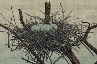 Nesting IV Digital Print by Butler, John,Realism