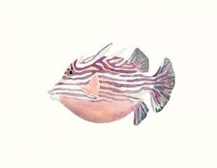 Watercolor Tropical Fish II Digital Print by McCavitt, Naomi,Decorative