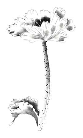 Ink Poppy Digital Print by Rae, Nan,Illustration