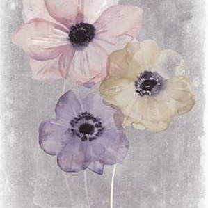Floral Waltz II Digital Print by Popp, Grace,Impressionism
