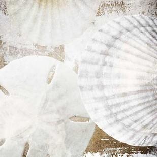 White Shells II Digital Print by Orlov, Irena,Impressionism