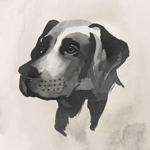Inked Dogs I Digital Print by Popp, Grace,Decorative