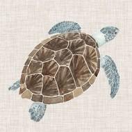 Sea Turtle I Digital Print by McCavitt, Naomi,Decorative