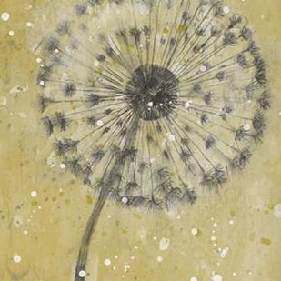 Dandelion Abstract I Digital Print by Otoole, Tim,Decorative