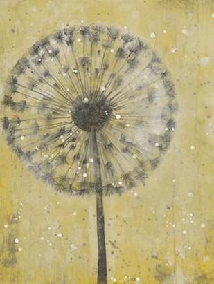 Dandelion Abstract II Digital Print by Otoole, Tim,Decorative