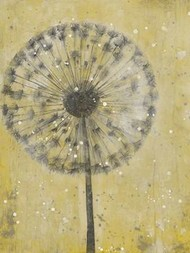 Dandelion Abstract II Digital Print by Otoole, Tim,Decorative