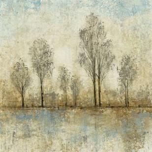 Quiet Nature III Digital Print by Otoole, Tim,Impressionism