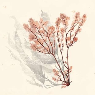 Vivid Algae VI Digital Print by Popp, Grace,Decorative