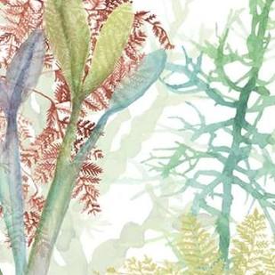 Woven Seaplants II Digital Print by McCavitt, Naomi,Impressionism