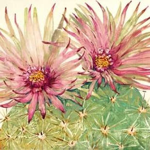 Cactus Blossoms I Digital Print by Otoole, Tim,Impressionism