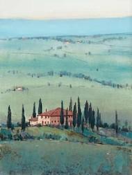 Hill Top Vista II Digital Print by Otoole, Tim,Impressionism