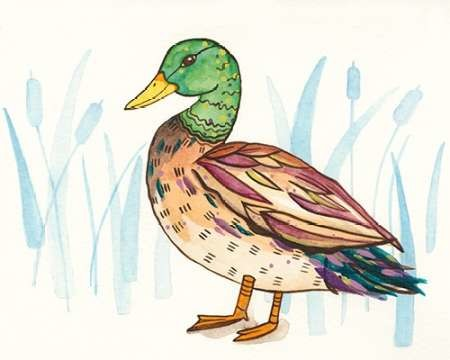 Wetland Mallard I Digital Print by Ewer, Rebekah,Decorative