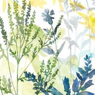 Layered Blooms I Digital Print by Meagher, Megan,Decorative