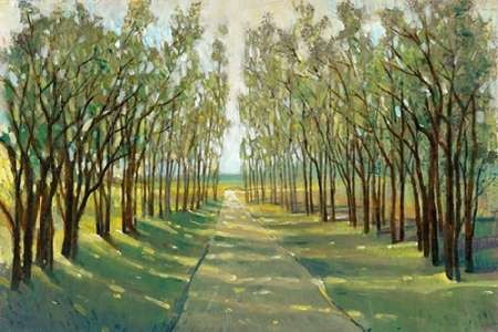 Forest Path Digital Print by Otoole, Tim,Impressionism