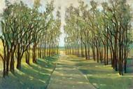Forest Path Digital Print by Otoole, Tim,Impressionism