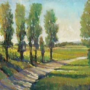 Lush Landscape I Digital Print by Otoole, Tim,Impressionism