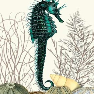 SeaHorse and Sea Urchins Digital Print by Fab Funky,Decorative