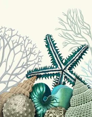 Starfish Under the Sea Digital Print by Fab Funky,Decorative